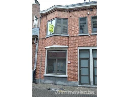 Foto Huis te koop - Hamme (Immovlan RAE47016)