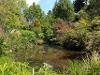 Picture Katikati Tauranga District & Western BOP