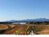 Picture Galeo Estates, Tasman