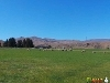 Picture Central Otago Lifestyle