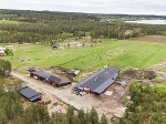 Bild Ekologisk mjölkgård i Lillkågeliden