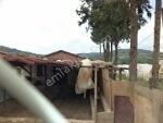 Fotoğraf Aymet emlak tan göçbeyli̇ köyün de satilik...