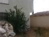 Fotoğraf Urla özbekte köy içinde iki katlı ve bahç