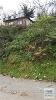 Fotoğraf Beykoz Çamlıbahçede Satılık 2 Adet Bahçeli Ev