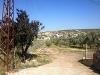 Fotoğraf Torbali satilik çi̇ftli̇k 8 000 m2 425 - tl