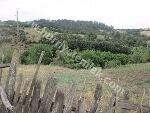 Fotoğraf Lapseki Karamusalar köyünde 4.000m2 satılık...