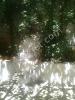 Fotoğraf Hoşgör de satılık 2+1 bahçeli garajlı Antep evi