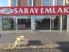 Fotoğraf Saray'dan Celaliye Ulus cd.sine cepheli...