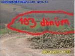 Fotoğraf Satılık çiftlik arazi̇si̇ hazer emlak 103 dönüm