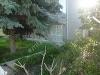 Fotoğraf Silivri maviyelkende mustakil yazlık kiralıktır...