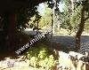 Fotoğraf Kemere bağli çirali köyünde satilik bahçe