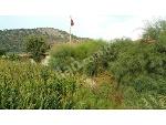Fotoğraf 4 Adet Villa Yapılabilen, 1250m2+ 2adet Toplamı...