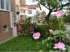 Fotoğraf Garden Apartment - For Rent/Lease - Adapazarı,...