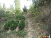 Fotoğraf Satılık Bahçe Konya Selçuklu Sille 3038 M2 İ