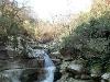 Fotoğraf Çanakkale Biga Gürçeşme Köyünde 7.000 Mt2_tarım...