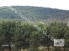 Fotoğraf Narlife da Narcity li Sedattan tam orman manzaralı