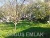 Fotoğraf İntepe köyü