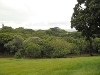 Photo Vacant Land For Sale in Illovo Beach