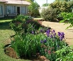 Photo 4 bedroom House For Sale in Bethulie for R 675...