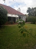 Photo Spacious Pinelands family home available for rent