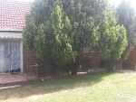 Photo 3 Bedroom house for sale in Bethulie