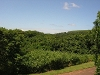 Photo Vacant land on kzn top golf estate - prince's...