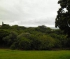 Photo Vacant Land Plot For Sale in Illovo