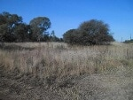 Photo Vacant Land For Sale in Walkerville