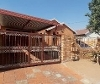 Photo 3 bedroom House For Sale in Mabopane for R 520...