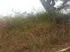 Photo 1200 sqm Stand for sale at Thohoyandou Unit D...