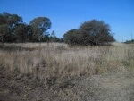 Photo Vacant Land for Sale. R 430 000: come and build...