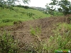 Photo Vacant Land For Sale in MARBURG