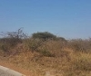 Photo Vacant Land / Plot For Sale in Bendor for R 500...