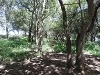 Photo R1,400,000 | Farm For Sale in Vaal River