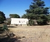 Photo 4 bedroom Farm For Sale in Walkerville for R 1...