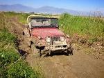 Fotoğraf Jeep CJ-5 4.3