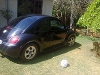 Photo 2000 Volkswagen Beetle Hatchback for sale 2 litre